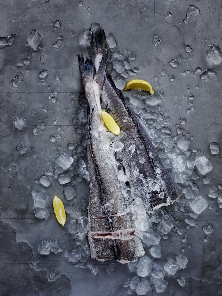 WW Fish