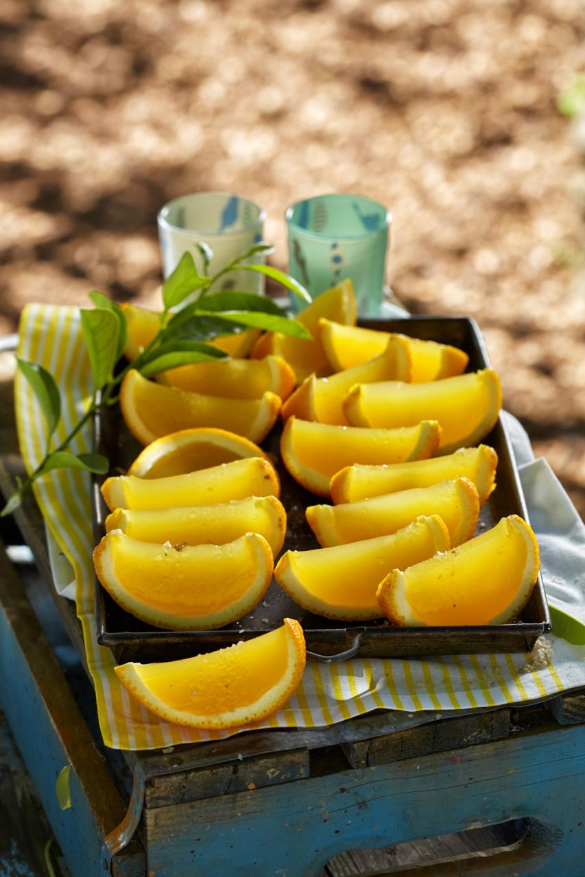 picnic082